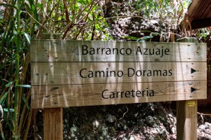Gran Canaria Walking Festival 2018 (Route 4) -  Barranco Azuaje
